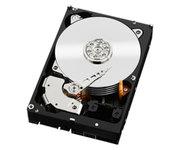 Western Digital Black 1TB 3.5'' SATA