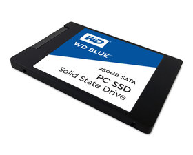 Western Digital Blue 250GB SSD