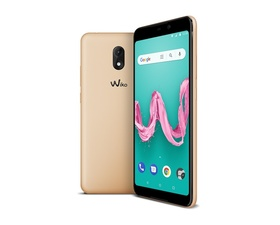 Wiko Lenny5 5.7'' 16GB RAM 1GB Gold